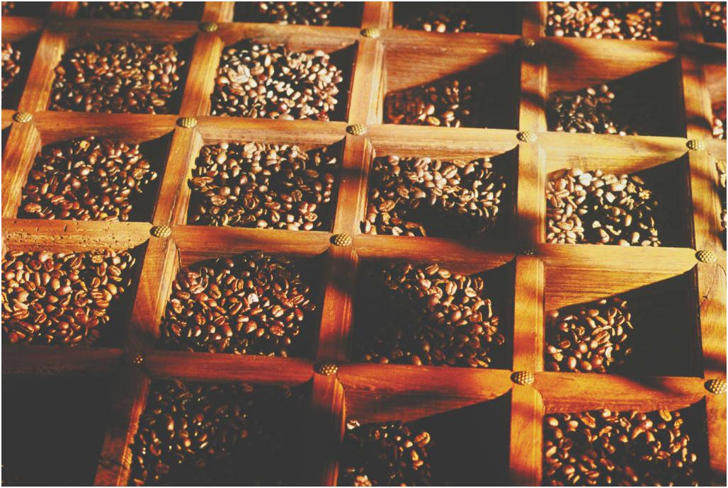 Tìm hiểu về cà phê đặc sản