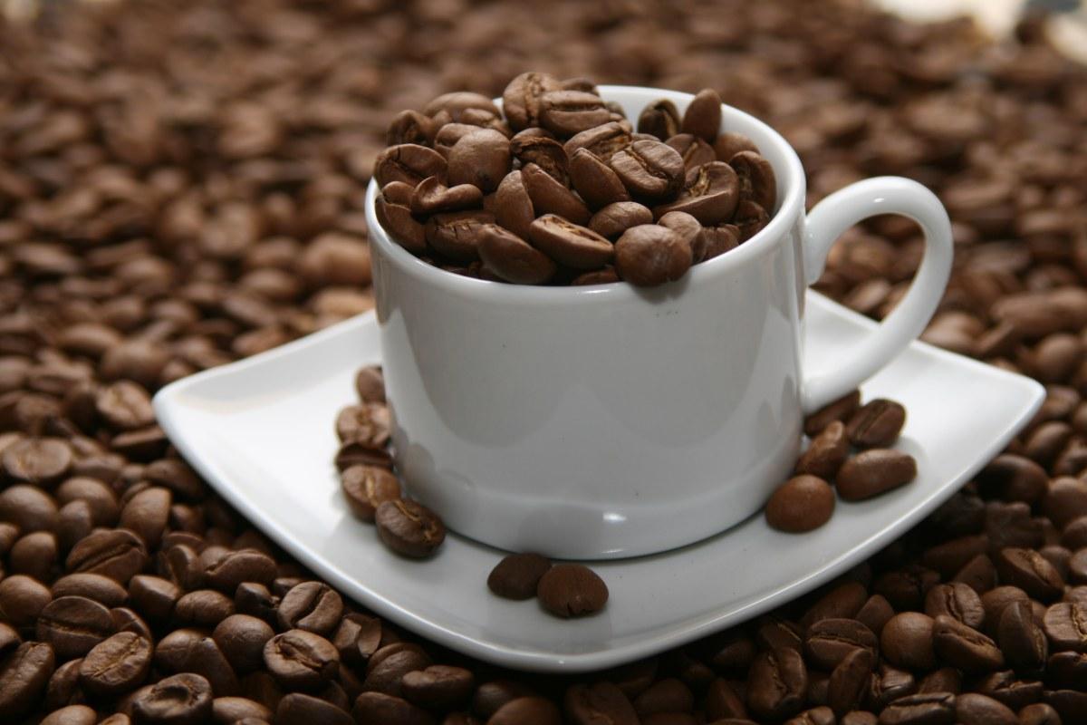 Cách pha cà phê Arabica ngon đúng chuẩn như thế nào?