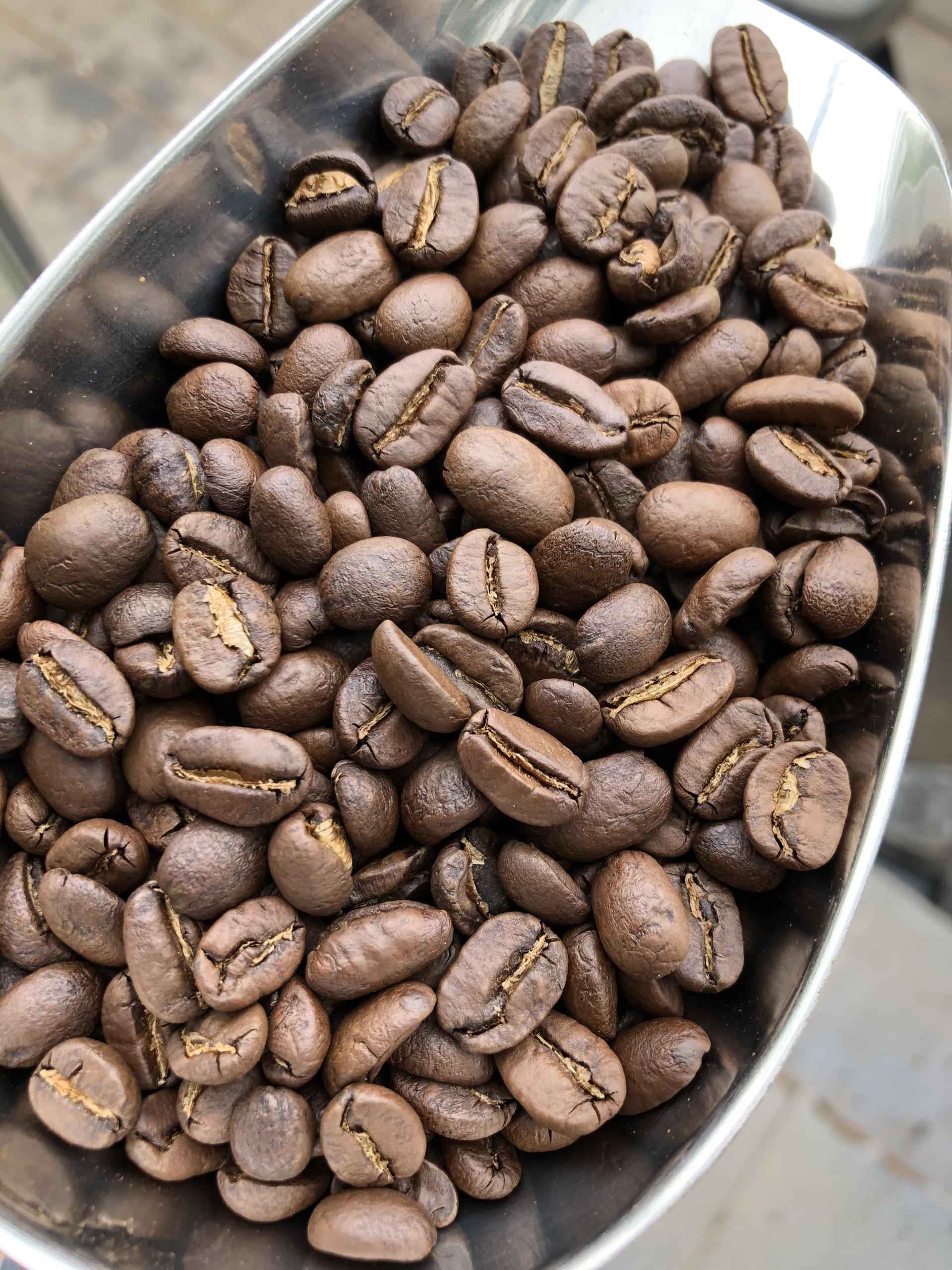 Cách chế biến cà phê nhân sống
